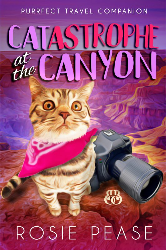 Catastrophe at the Canyon